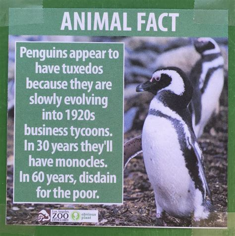 fake animal facts  posted   los angeles zoo