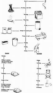 Rice Processing Flow Chart  U2013 Milling Systems Irri Rice