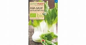 Pak Choi Samen : samen maier bio asia salat senfkohl pak choi 1 packung bloomling deutschland ~ Orissabook.com Haus und Dekorationen