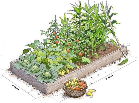 build raised garden beds construction tips
