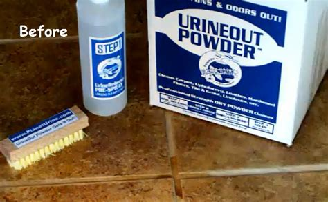 Urine Hardwood Floor Cleaner by Urine On Wood Floors How To Clean All Those Black