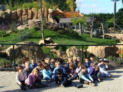 zoo de beauval classe muriel b la petite fadette