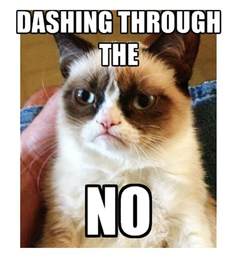 Tard The Cat Meme - 109 best grumpy cat images on pinterest
