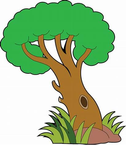 Nature Clipart Clip Land Plant Tree Outdoors