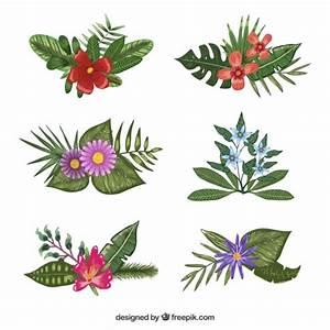Blumen Bilder Gemalt : eine gro e auswahl von verschiedenen blumen mit wasserfarben gemalt download der kostenlosen ~ Orissabook.com Haus und Dekorationen