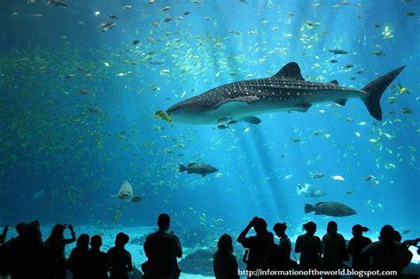information of the world world s largest aquarium