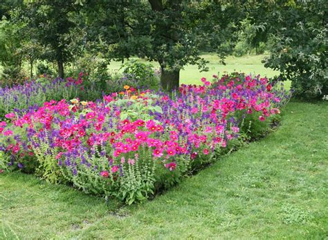 Den Balkon Mit Passenden Pflanzen Und Blumen Im September Beleben by Pflanzen F 252 R Den Bauerngarten Pflanzen Ziehen Pflegen