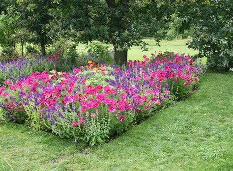 Pflanzen Für Den Bauerngarten  Pflanzen  Ziehen, Pflegen