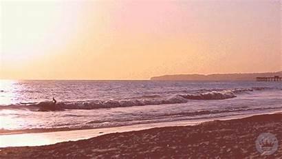 Summer Sunset Hallmark Ecards Giphy Gifs Surfing