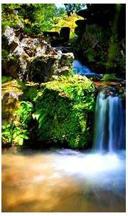 Live Waterfall Wallpaper Screensaver - (55+ images ...