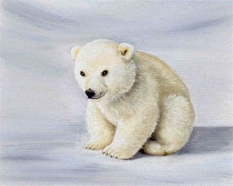 1000 images about colin bradley animal paintings pinterest
