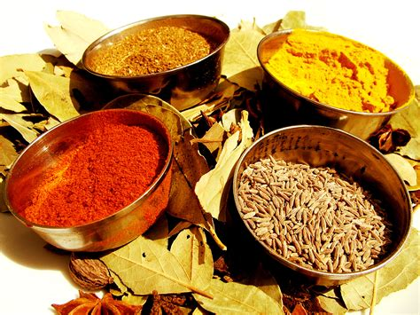 cuisine spicy foods of india