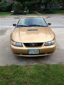 Sell used 2000 Ford Mustang GT Convertible 2-Door 4.6L in Aurora, Ohio, United States