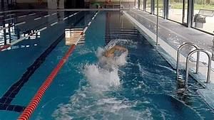 Jogging Geschwindigkeit Berechnen : triathlon trainingsbereich beim schwimmen berechnen ~ Themetempest.com Abrechnung