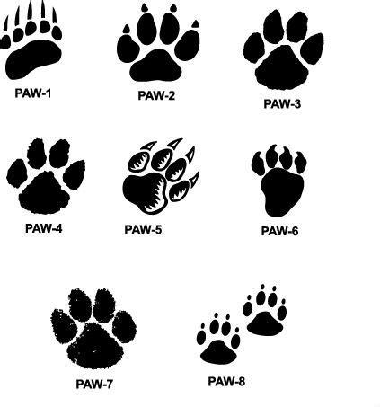 tiger paw prints walking drawing cougar paw prints