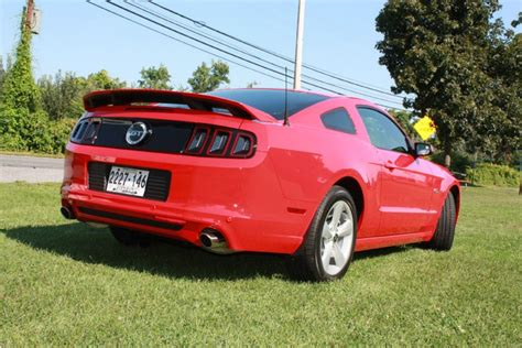 race red  gt finally   mustang source