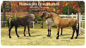 Horse Breeding - Pictures, posters, news and videos on ...