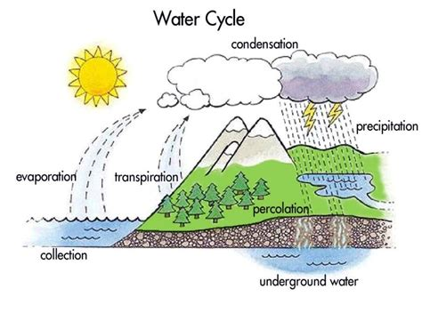 free coloring pages of water cycle diagram 692 | Montessori Materials Water Cycle