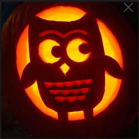 owl pumpkins festive finds pinterest
