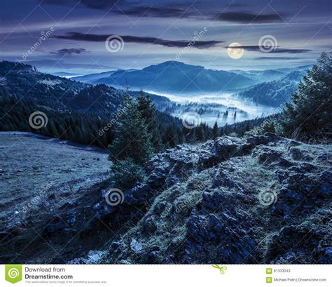 Valley With Conifer Forest Full Of Fog In Mountain At