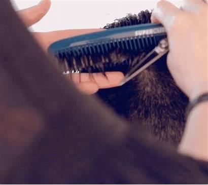 Comb Undercut Textured Behindthechair Hair Supercuts Cut