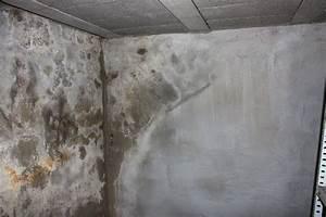 Salpeter In Der Wand : salpeter ~ A.2002-acura-tl-radio.info Haus und Dekorationen
