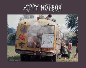 Hippy Memes - hippy hotbox weedmemes weed memes