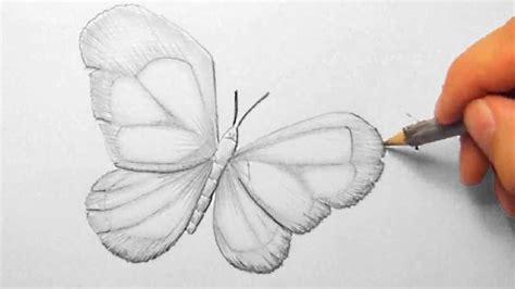 schmetterling zeichnen im zeitraffer butterfly drawing
