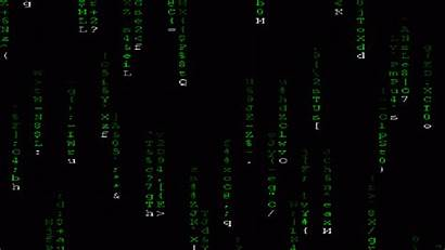 Coding Animated Matrix Windows Students Outlook Jobs