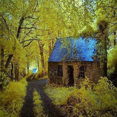 Ireland Cottage by Forest Cottage Stradbally Ireland