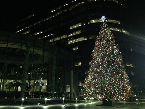 best 28 massachusetts christmas tree association