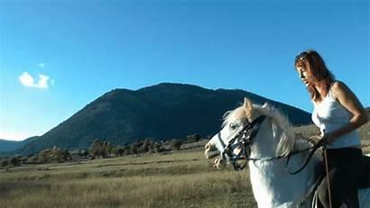 Riding Horse Ridingladies Learning She Pony Teacher