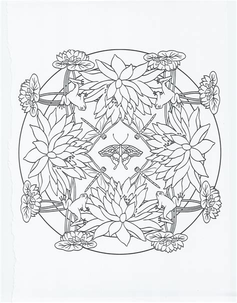 image result  frog coloring pages  adults