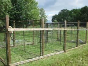 Dog Kennel Fence Panels