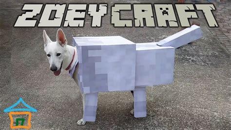 zoeycraft real life minecraft wolf minecraft dog