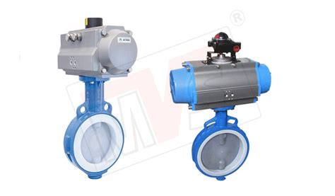 Ptfe Seated Butterfly Valve Manufacturer, Ptfe Sleeved