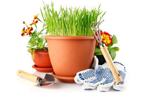 the of gardening gardening salt lake county extension