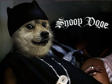 Dogecoin Rises More Than 36% After Snoop Dogg Becomes ...