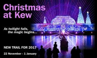 Twinkling Christmas Tree Lights by See Tickets News