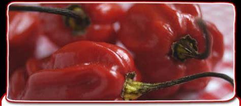 Bbc Science Nature The Semen Taste Test
