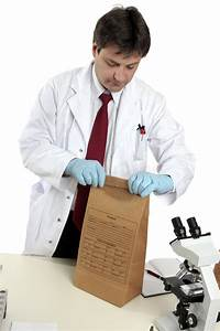 Evidence Bag Stock Photo  Image Of Proof  Collect  Crime