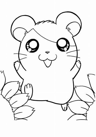 Coloring Hamtaro Hamster Colouring Mewarnai Dibujos Ausmalbilder