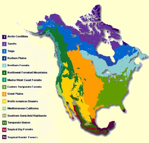 Biosphere As Placebiomes And Watersheds Introduction