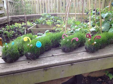 top 25 best school gardens ideas on 952 | 767e703c8adadf0509b8ff51beb9a6bc preschool ideas preschool garden
