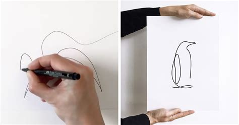 Amazing One Line Drawings