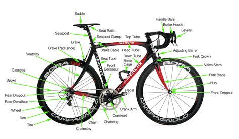 Road Bike, Mountain Bike, Bmx, Biking, Cycling And