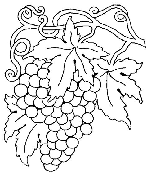 rainbow fish book coloring pages for kids grapes coloring pages for kids