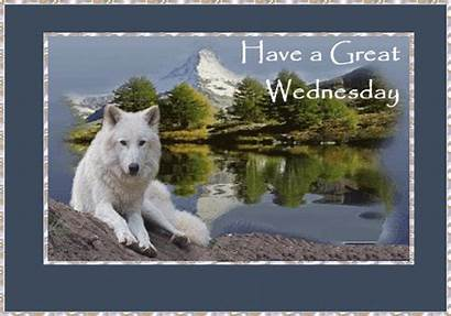 Wednesday Gifs Reflection Graphics Misc Statement