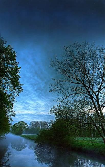 Background Desktop Portrait Vertical Monitors Sunset Tree