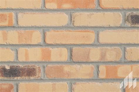 cigarfactory thin brick veneer manufactured by general shale